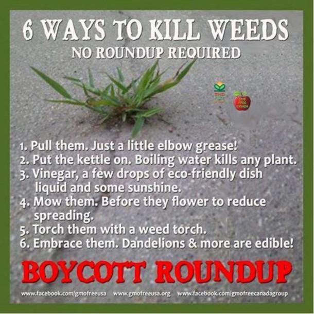 Ban Roundup posting